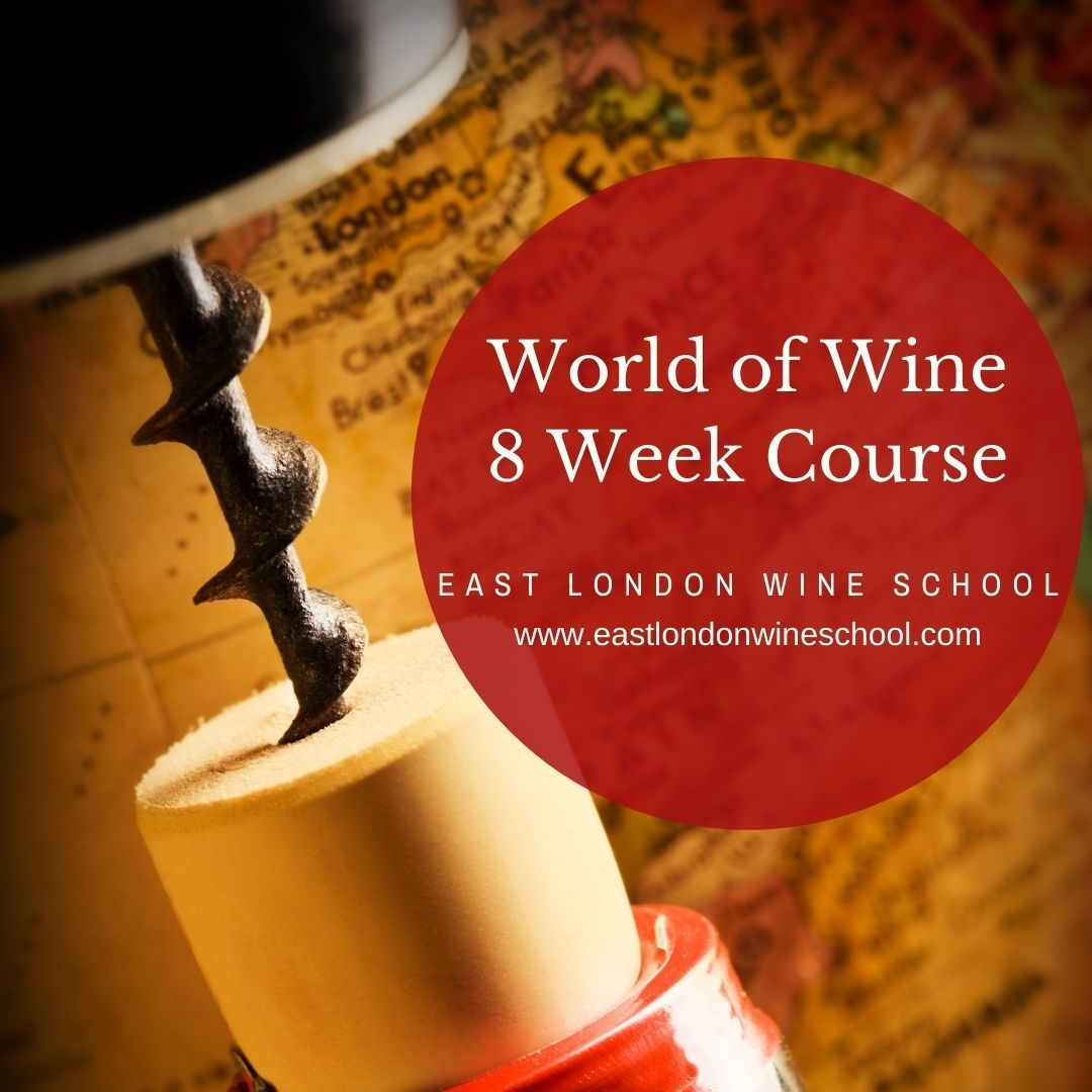 Eight Week World of Wine Tour - Sept 2021