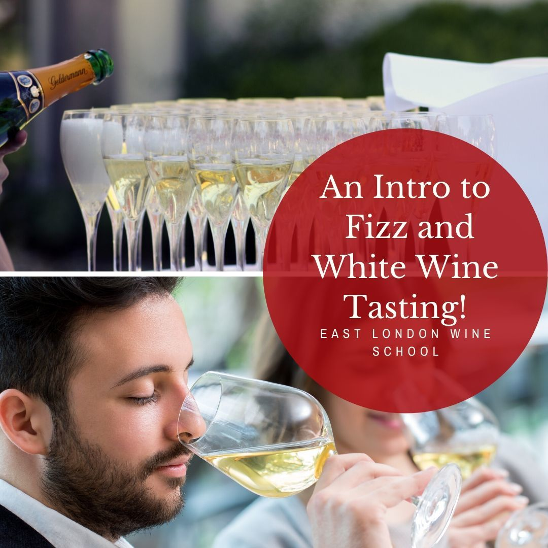 Introduction to White and Rose Wines
