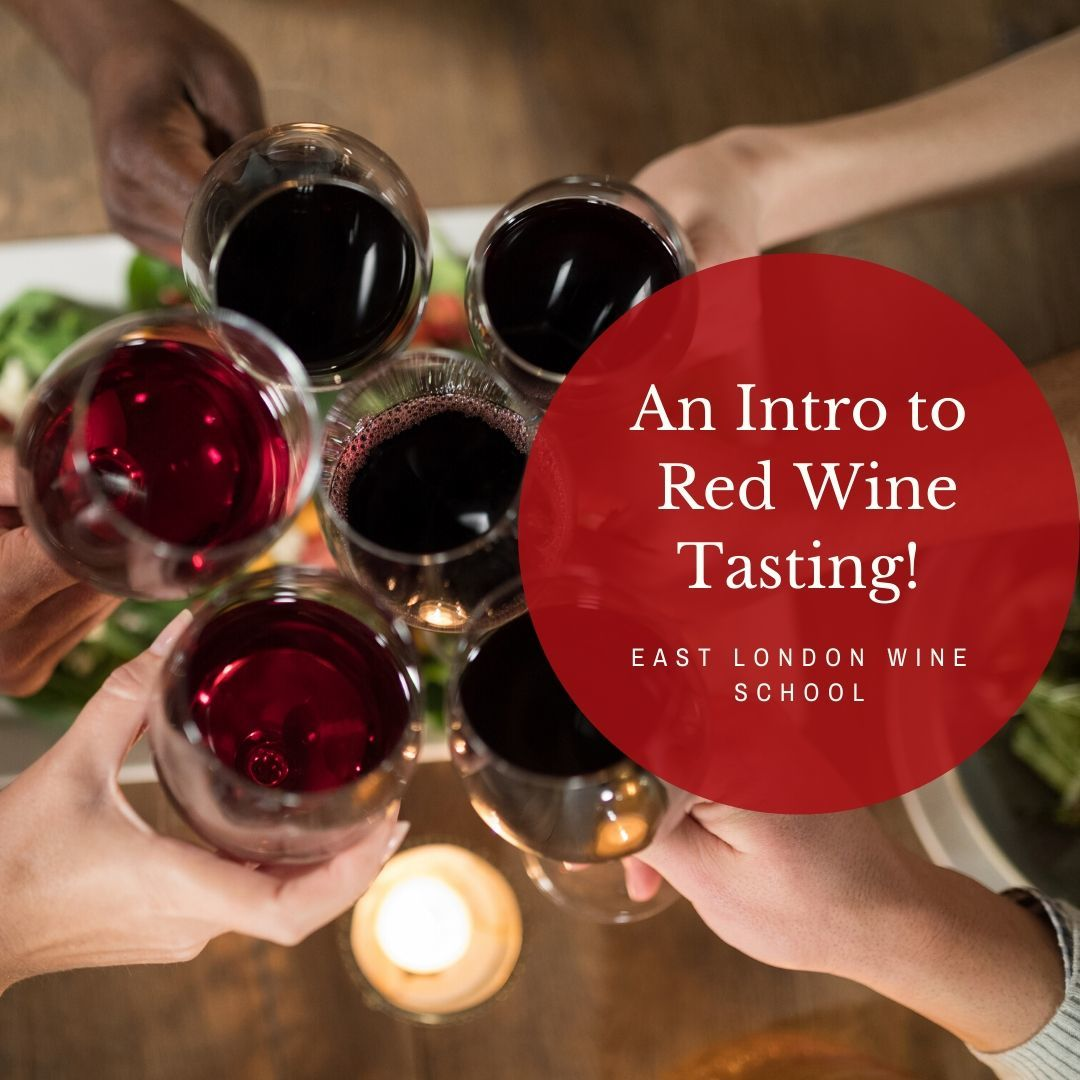 Introduction to Red Wines