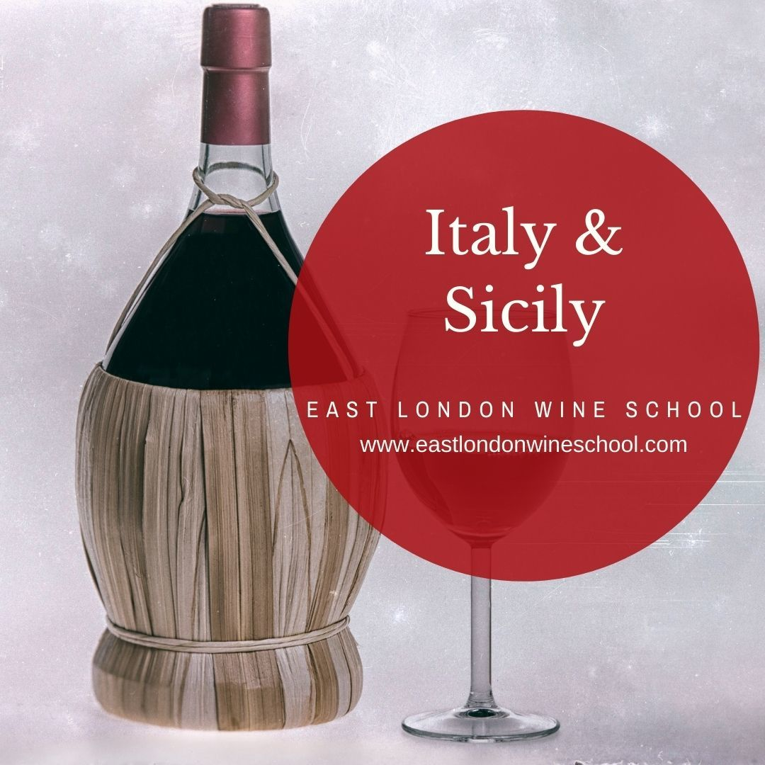 Wines of Italy and Sicily
