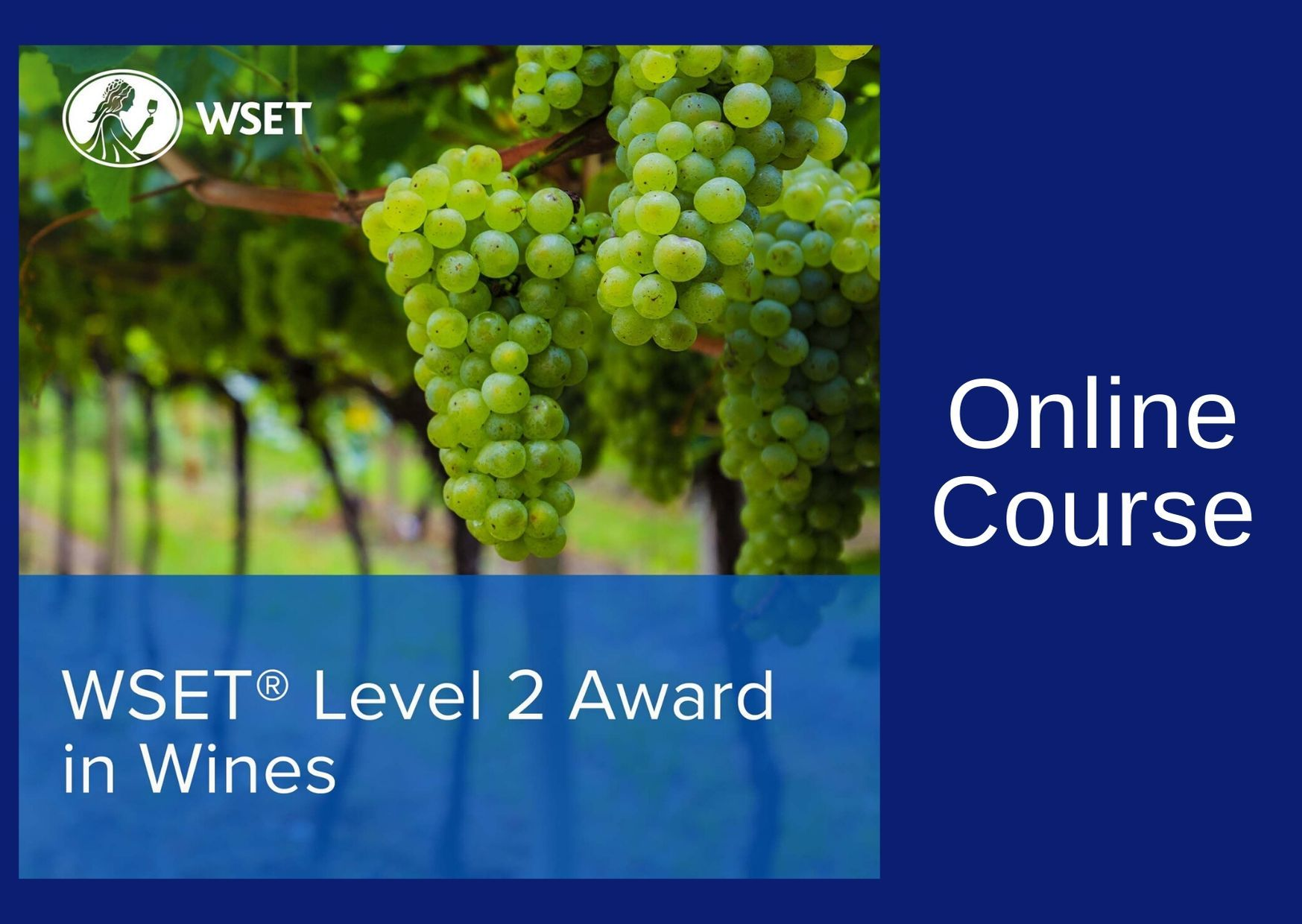 WSET Level 2 Award in Wines - Online - Afternoons