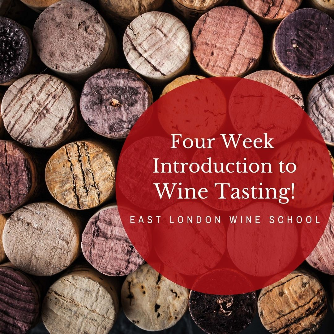 Four Week Introduction to Wine