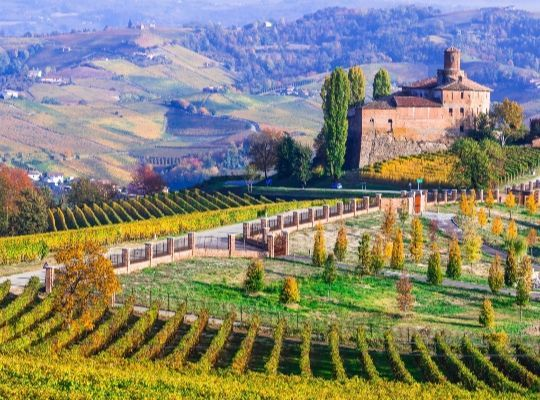 Wines with passion; Spain & Italy