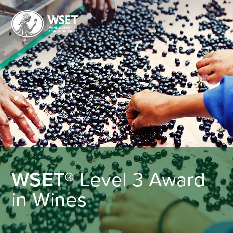 WSET Level 3 in Wines - CLASSROOM